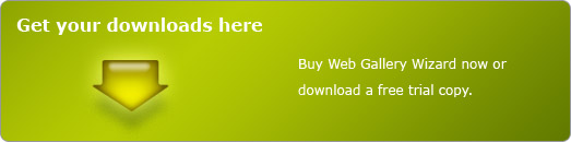 Buy or download Web Gallery Wizard.